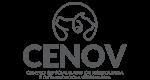 Cenov